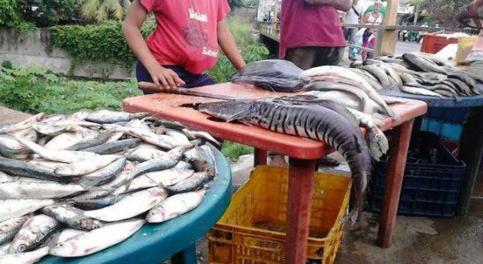 Pescado en Tucupita