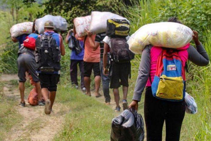 venezolanos-retornan