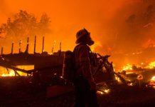 Las llamas han consumido cerca de 42 kilómetros cuadrados de bosque | Foto: California Times