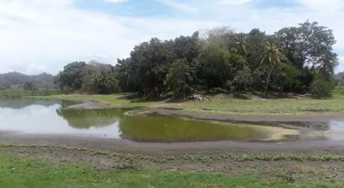 Según los residentes, la laguna de Ticamaya se ha convertido