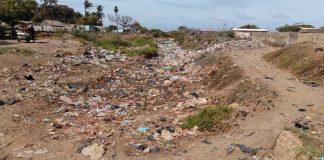 Los Filuos Guajira