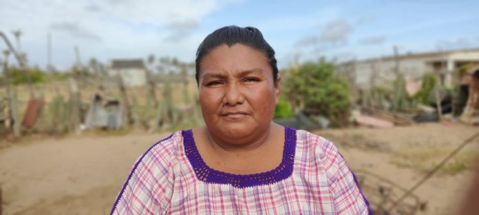 Yackelin González mujer Guajira