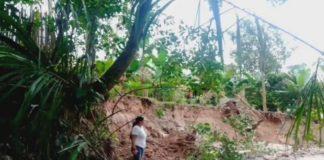 Ecocidio en Táchira